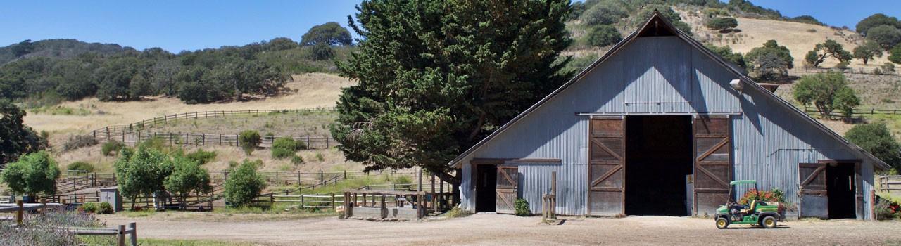 blue_barn