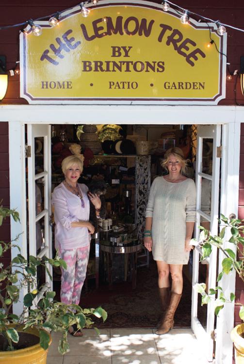 Brinton's - the Lemon Tree