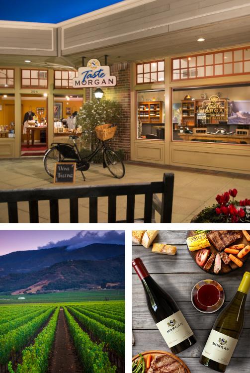 Taste Morgan - Morgan Winery