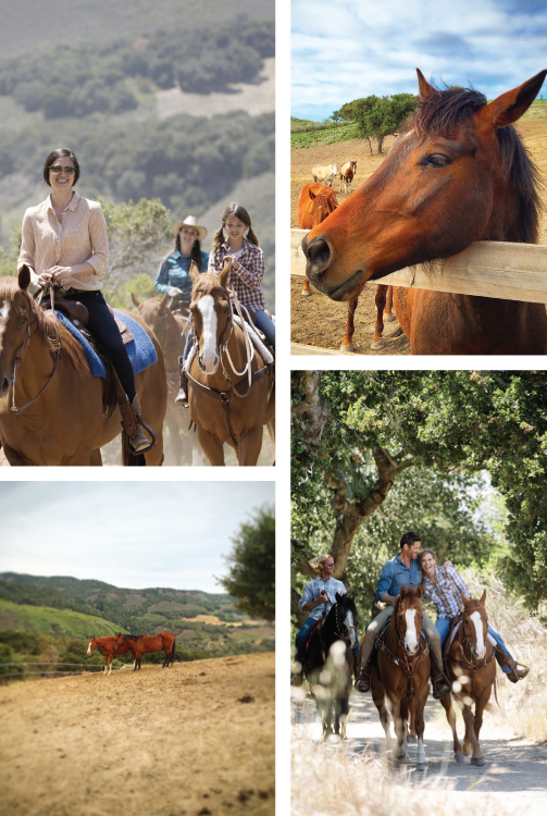 Carmel Valley Ranch Equestrian Center