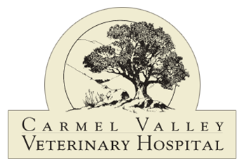Carmel Valley Veterinary Hospital Logo
