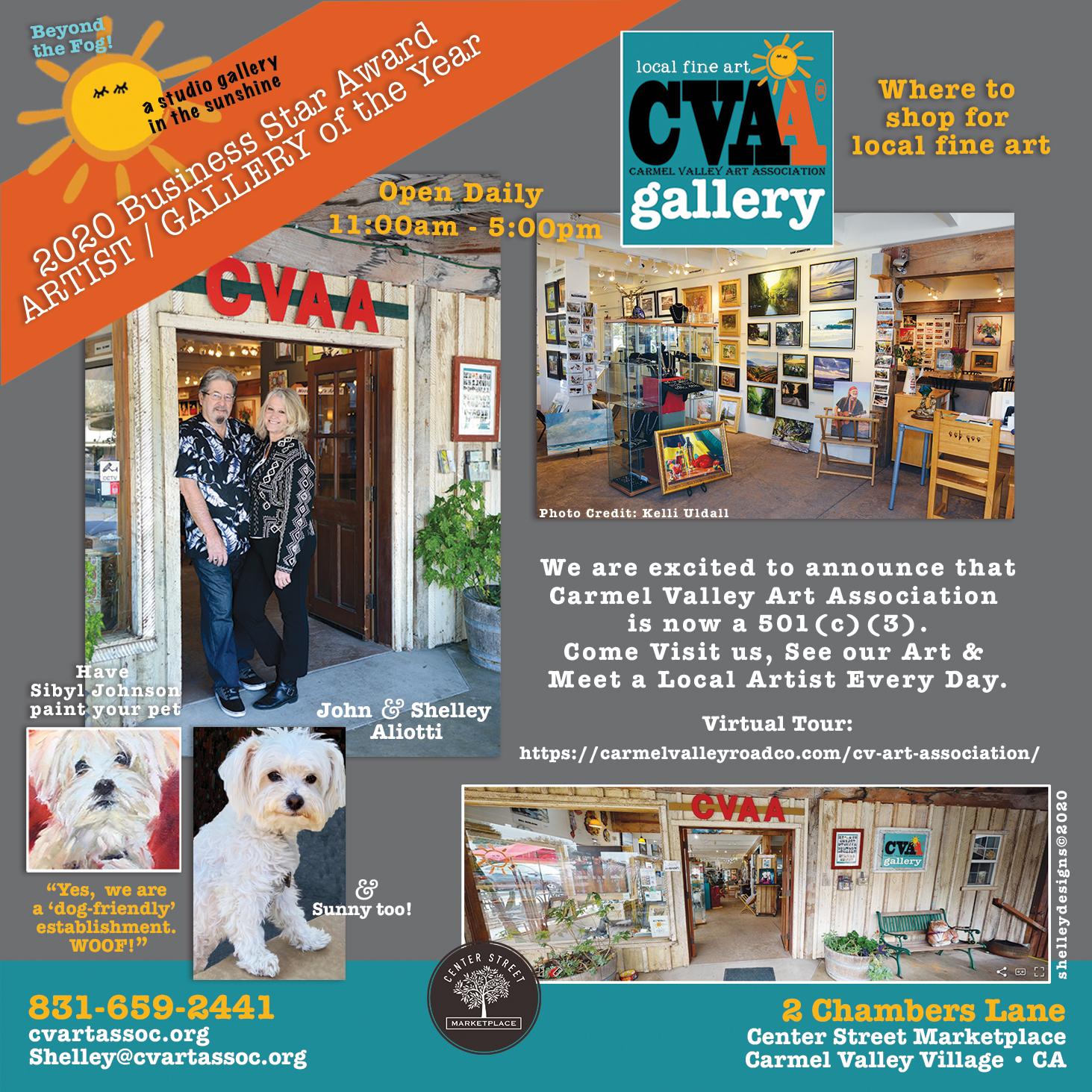 Visual describing Carmel Valley Art Assn.'s recent change to 501(c)(3) status.